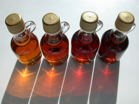 Maple syrup: delicious, nutritious, and medicinal.